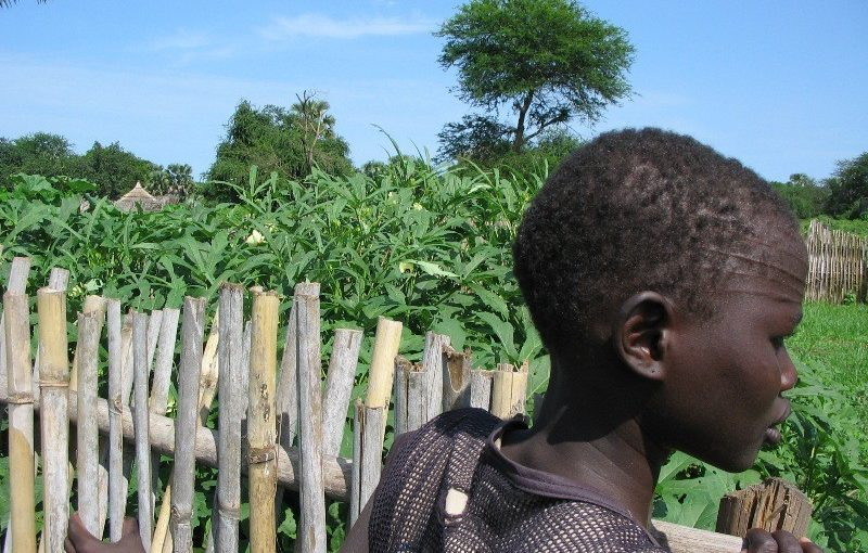 Cooperazione: Sud Sudan, papa Francesco dona 25 mila euro per kit ortofrutticoli a 5 mila famiglie in Equatoria centrale