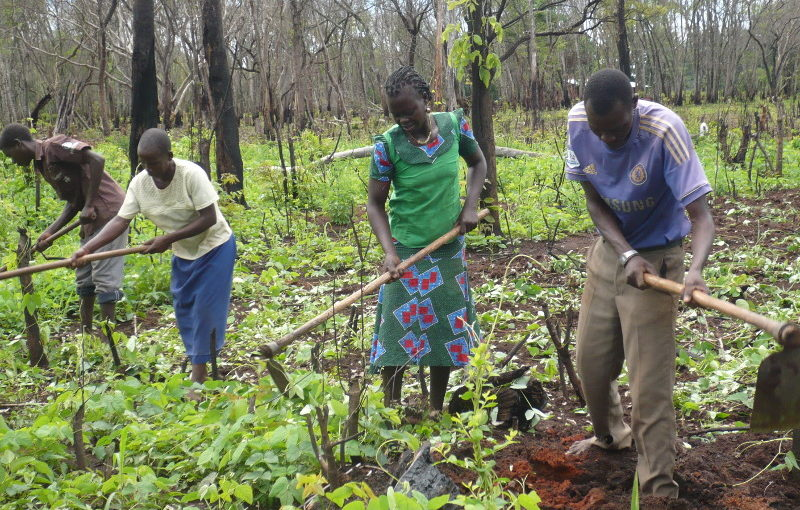 Continua la formazione agricola a Mupoi