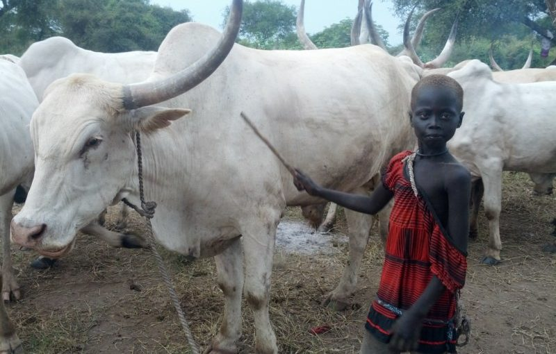 Vescovi Sud Sudan: appello contro crimini di guerra