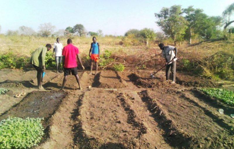 <strong>Lanciata la nuova campagna agricola nello Stato di Gbudue</strong>