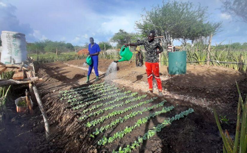 <strong>L'agricoltura contro la fame, per la pace e la convivenza interetnica</strong>